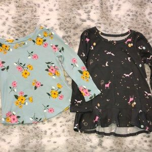 Other - ‼️✨2 for $10✨‼️ Baby Girl 2T Long Sleeve Shirts